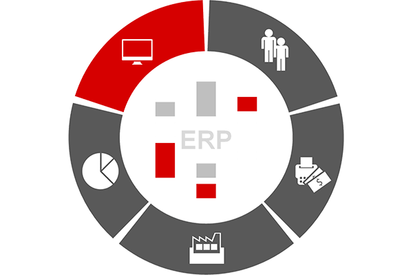 ERP-functionality